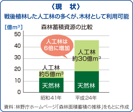 図:森林蓄積資源の比較