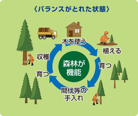 図:森林機能のバランスがとれた状態